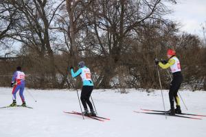 Областные соревнования по лыжным гонкам, посвященные памяти МС СССР В, Дрожжинова
